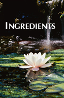 All of our skincare product ingredients